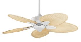 Fanimation Windpointe® Ceiling Fan