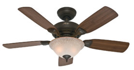 Hunter Caraway Ceiling Fan