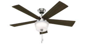 Hunter Hembree Ceiling Fan